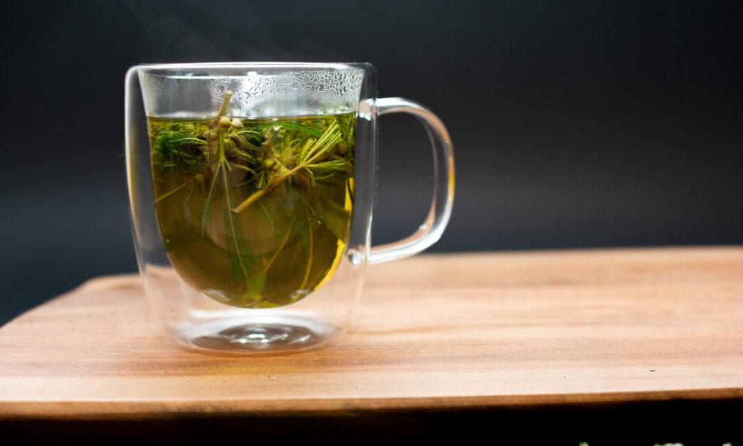 Herbata konopna, Herbaty konopne